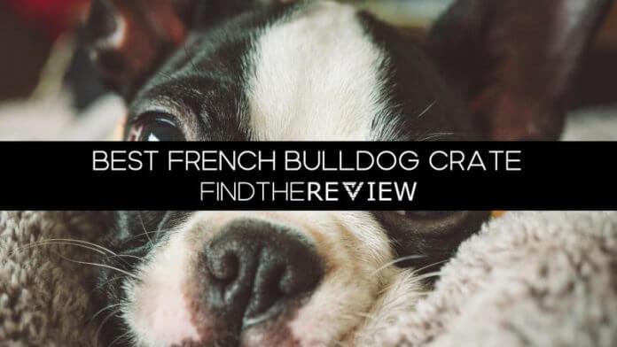Best French Bulldog Crate